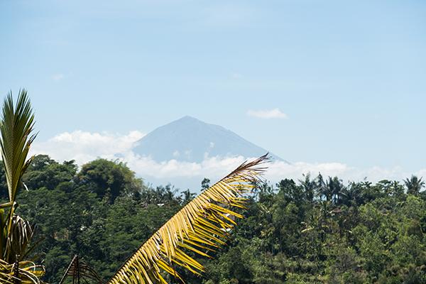 Bali in beeld